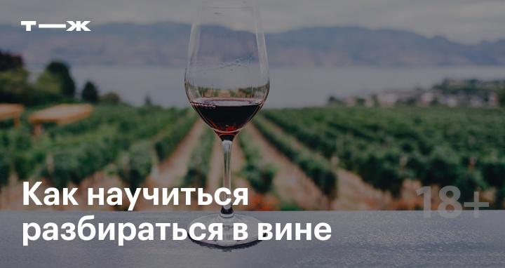 https://journal.tinkoff.ru/wine/?utm_source=telegram&utm_medium=social