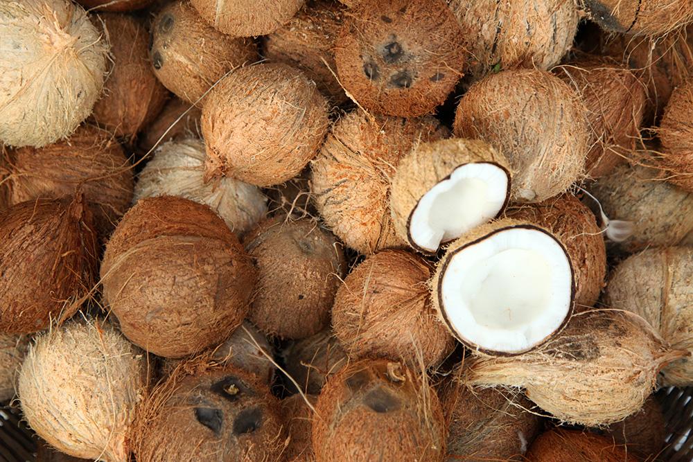 Осмотрите три отверстия, или«глазка», кокоса — за эти места фрукт крепится к пальме. Они должны быть без гнили, такого же цвета, как сам кокос, иличуть темнее. Если они продавливаются, то плод уже перезрел и покупать его не стоит