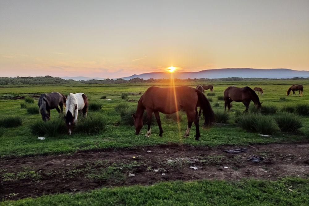 Закаты в моем родовом селе вШиринском районе республики