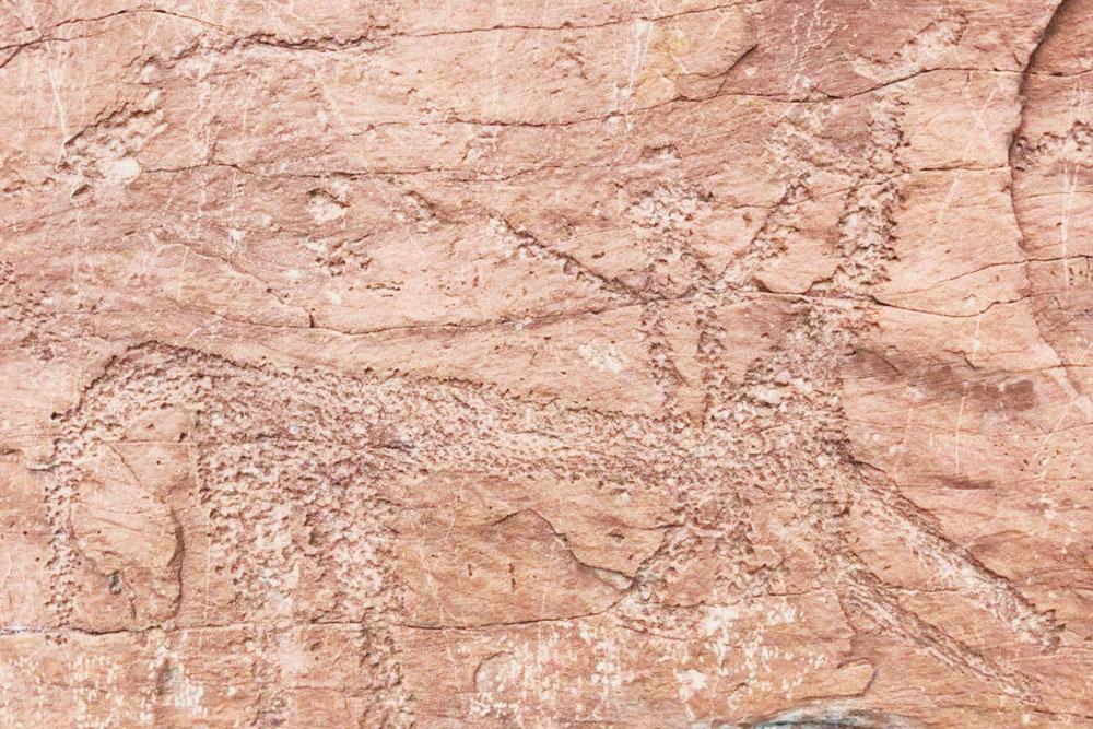 Петроглиф сСулекской писаницы, тут явно виден человек икакое-то животное. Экскурсоводы утверждают, что это динозавр, но я сомневаюсь