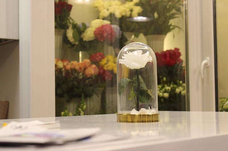 Люди покупают хризантемы, голландские красные и белые розы и местные персиковые. А вот экзотика, лилии и желтые розы в Кисловодске не в ходу
