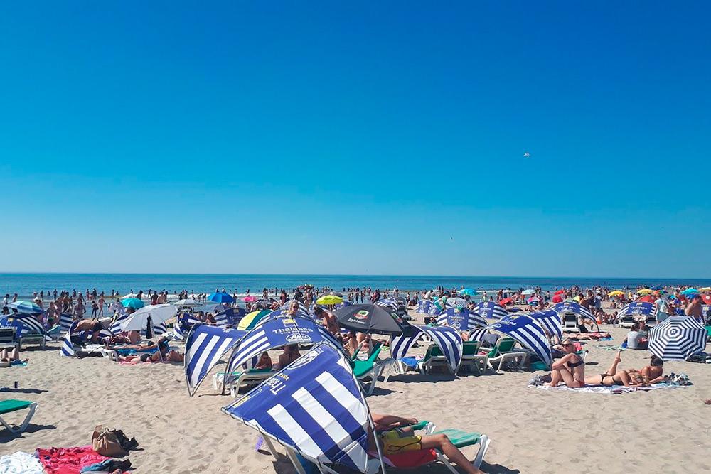 В жаркий день пляж Зандворта выглядит как настоящий курорт