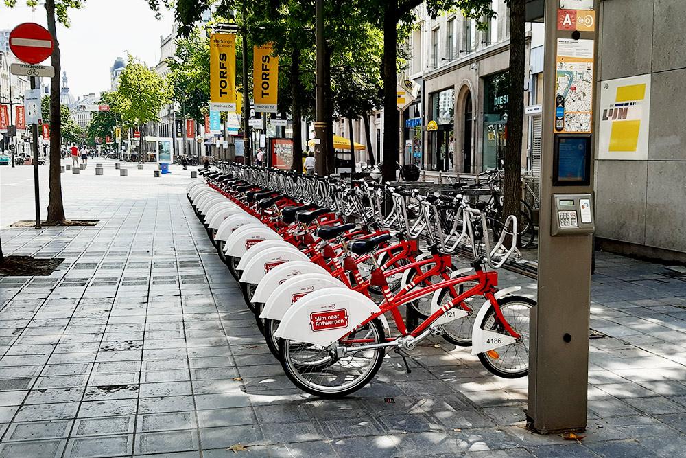 Чтобы взять велосипед, нужно оплатить любой абонемент насайте или вприложении Velo, после чего придет смс скодом. Этот код нужно ввести впаркомат, иодин извелосипедов разблокируется