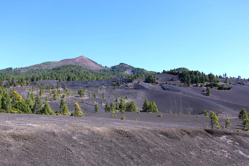 В Кумбре-Вьеха можно увидеть редкое сочетание вулканического пейзажа и зелени