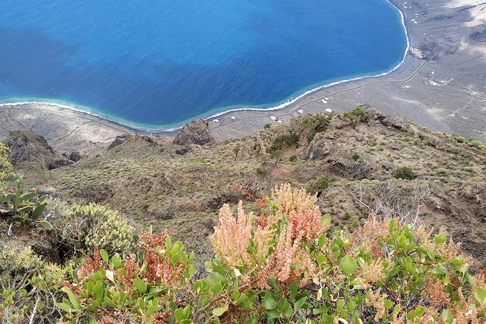 Такие насыщенные краски на этом острове круглый год: на Иерро больше осадков, чем на юге Тенерифе