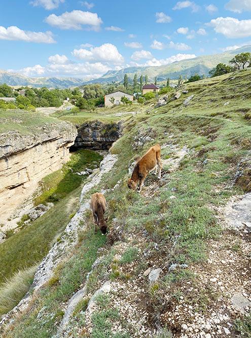 Ущелье надводопадом