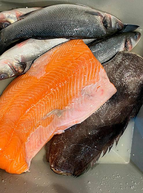 Рыба из «Метро»