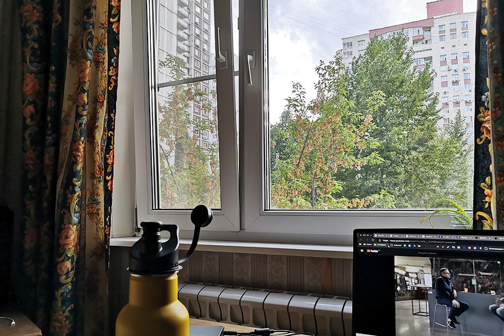 Вид изнашего окна непритязательный: дома идеревья