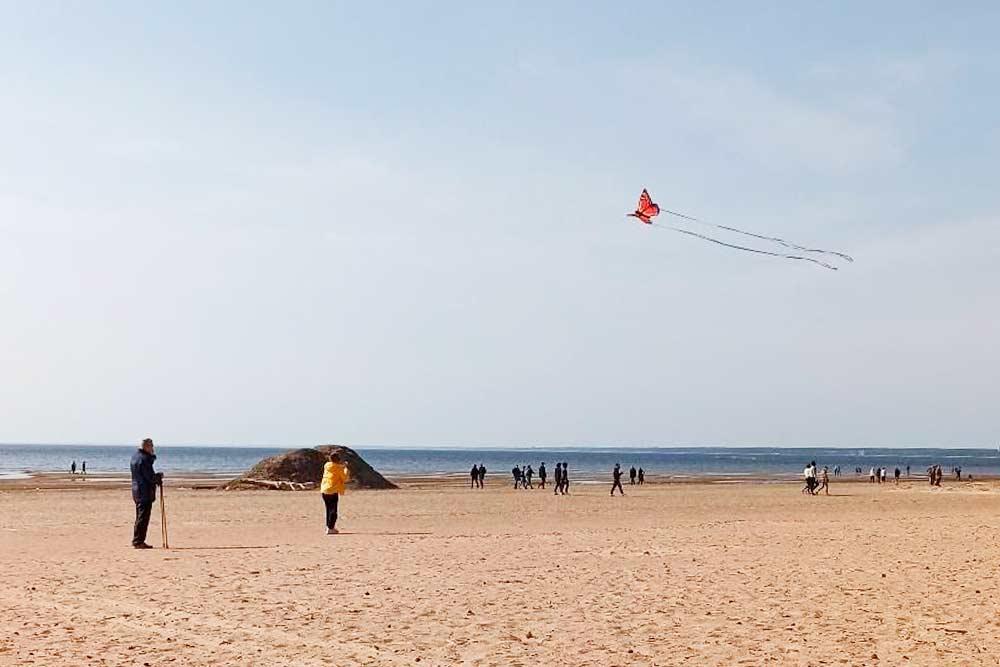 На пляже запускают воздушного змея