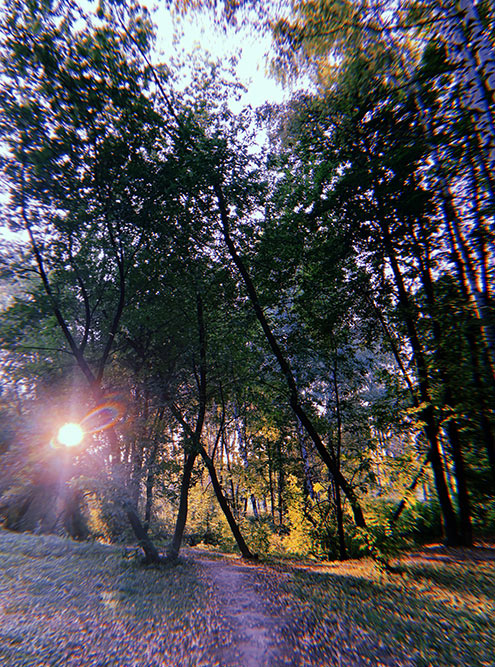 В парке классно, светит солнце