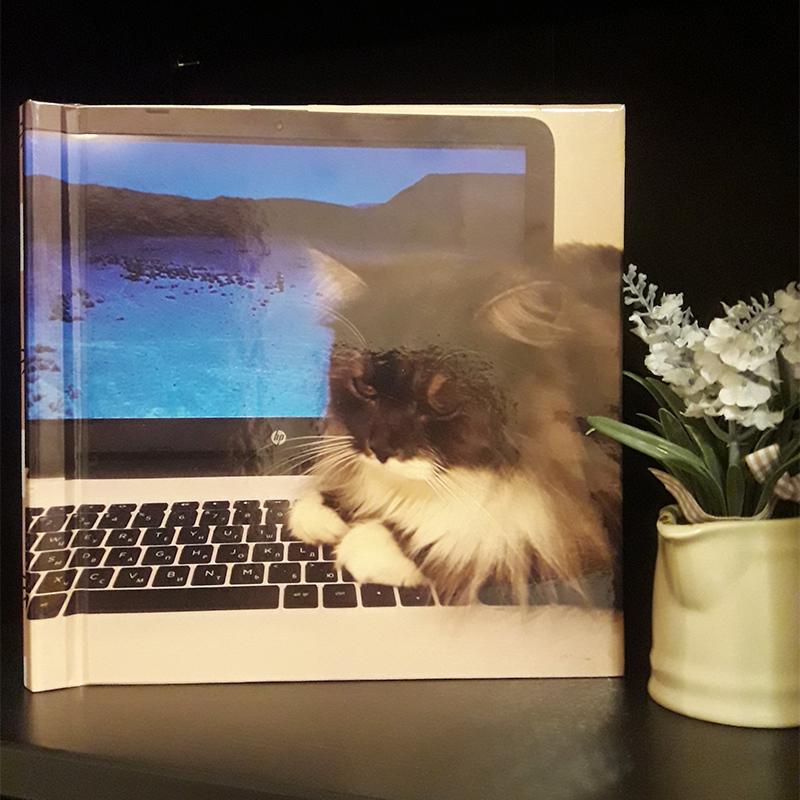 Мы так любим Дольку, что у нее есть даже собственный фотоальбом