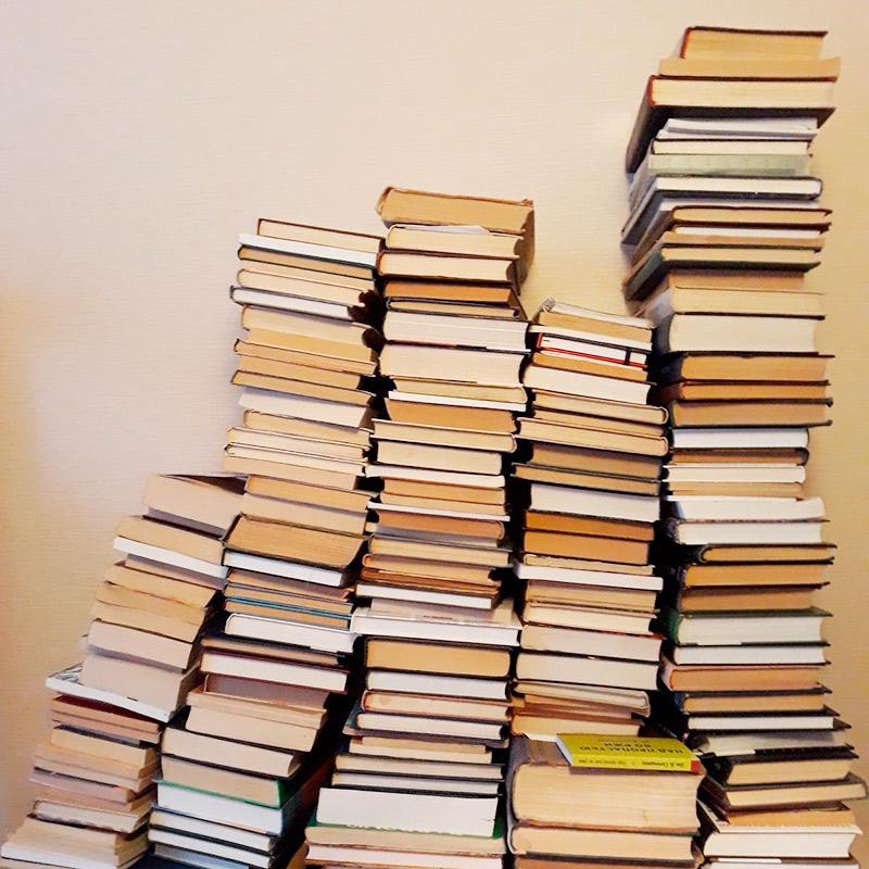 Гора моих книг