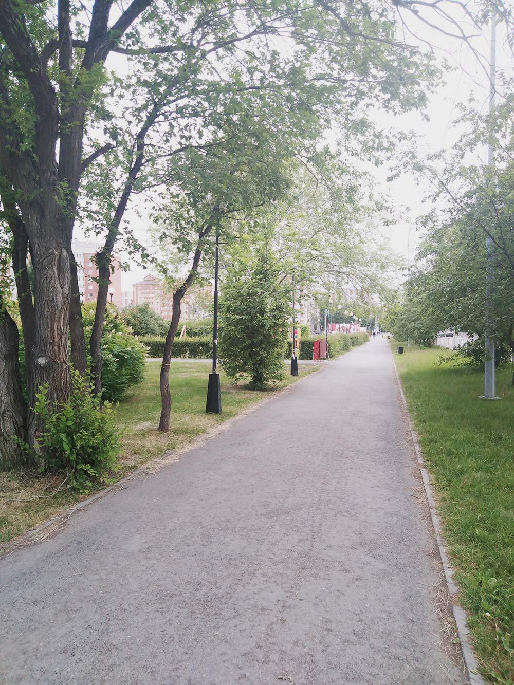 По пути в детский сад
