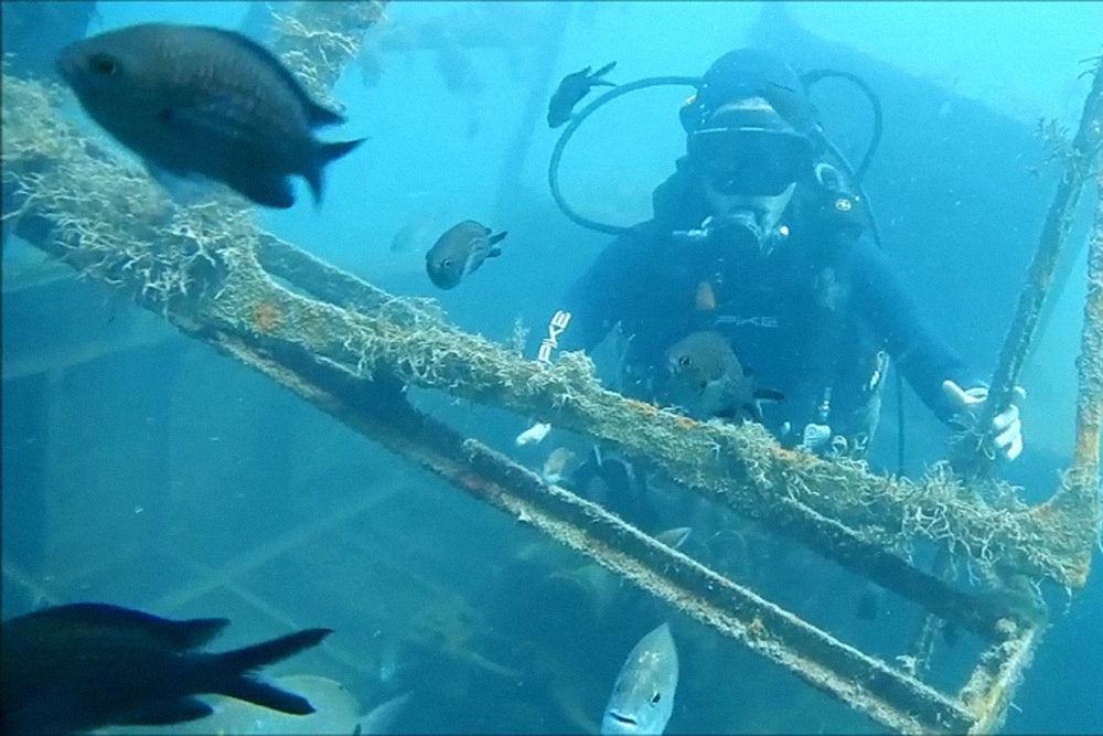 Затопленная рыбацкая шхуна обросла водорослями, теперь рядом много рыбок