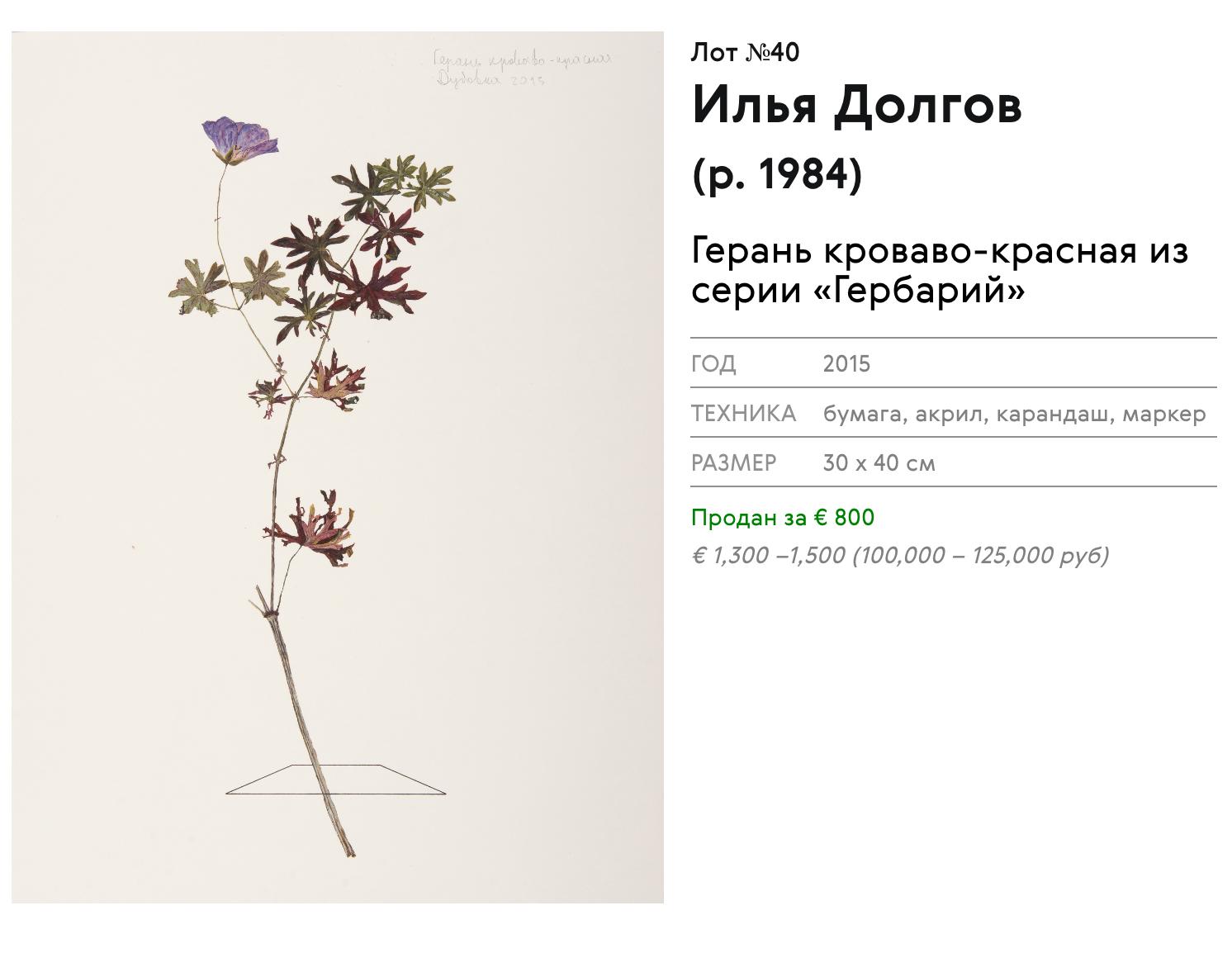 Серия «Гербарий» продаётся в московский галерее XL, цена за 1 лист — € 1100