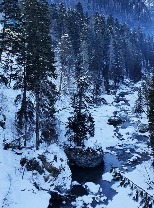 На территории заповедника много горных рек