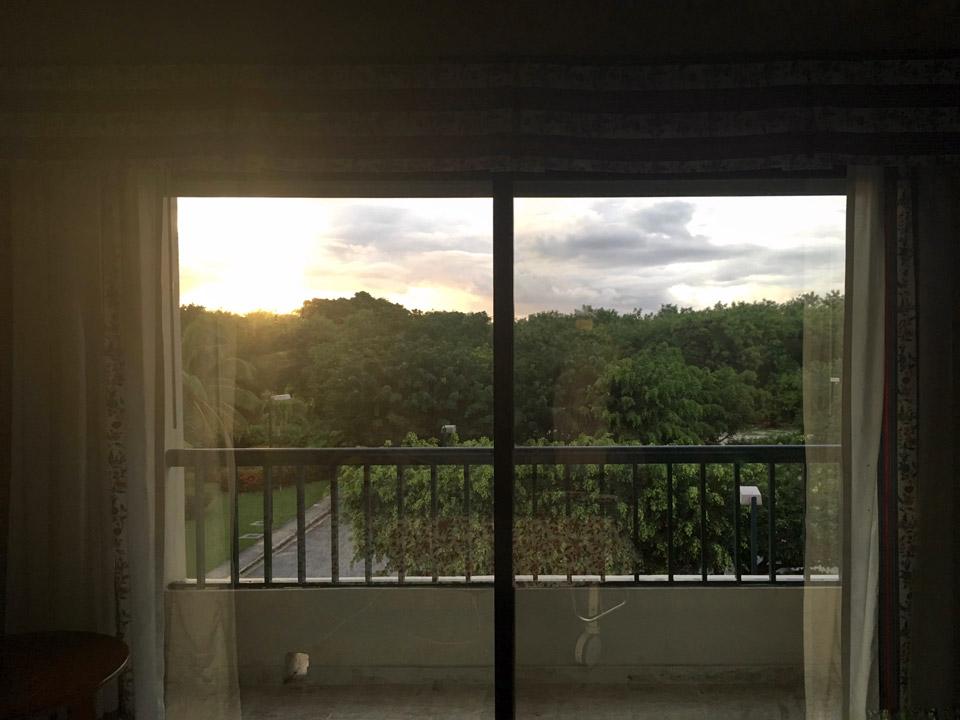 Вид из окна палаты