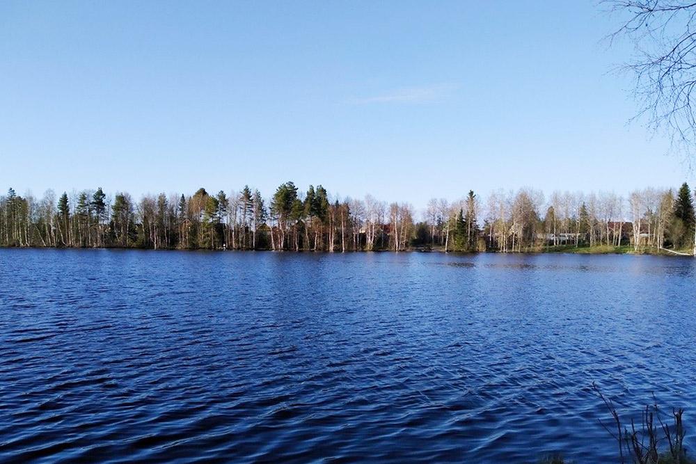 Вид на озеро на даче