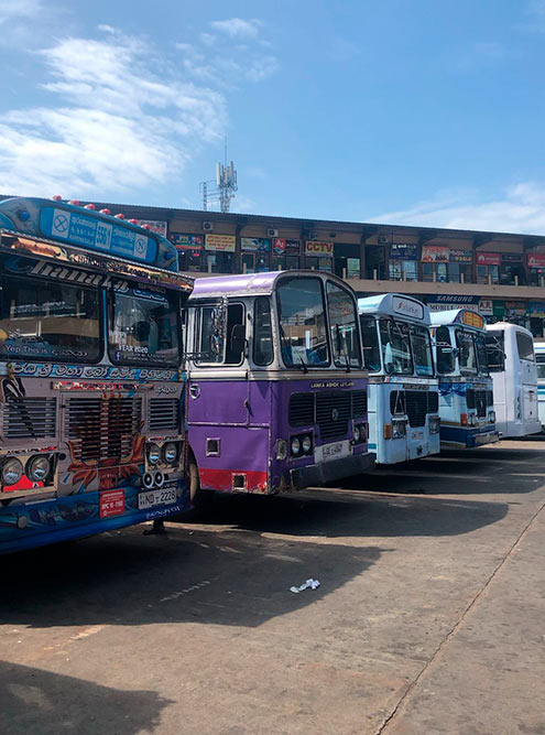Автобусная станция в городе Курунегале — одно из самых шумных мест, в котором мне довелось побывать. Ланкийцы зазывают на свой маршрут криками и даже песнями