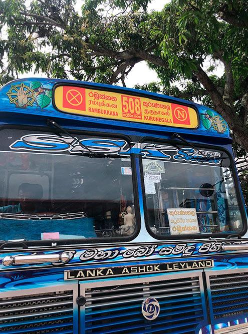 Над лобовым стеклом в каждом автобусе есть табличка с пунктом отправления, назначения и номером трассы, по которой следует автобус