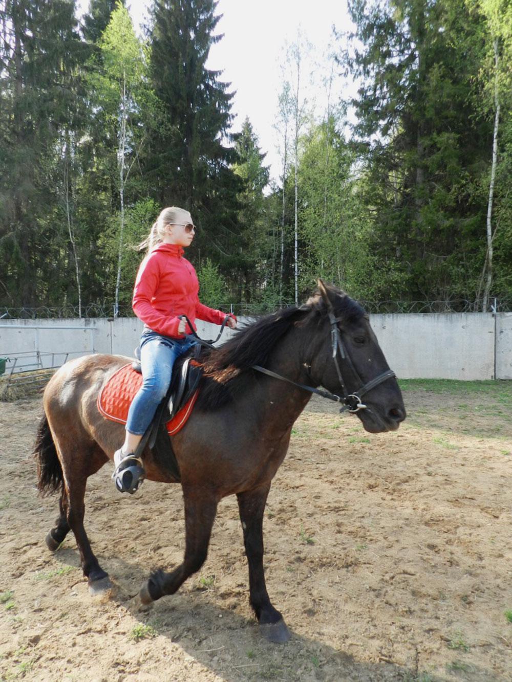 На базе отдыха можно активно провести время. Мы с детьми приезжаем туда покататься на лошадях