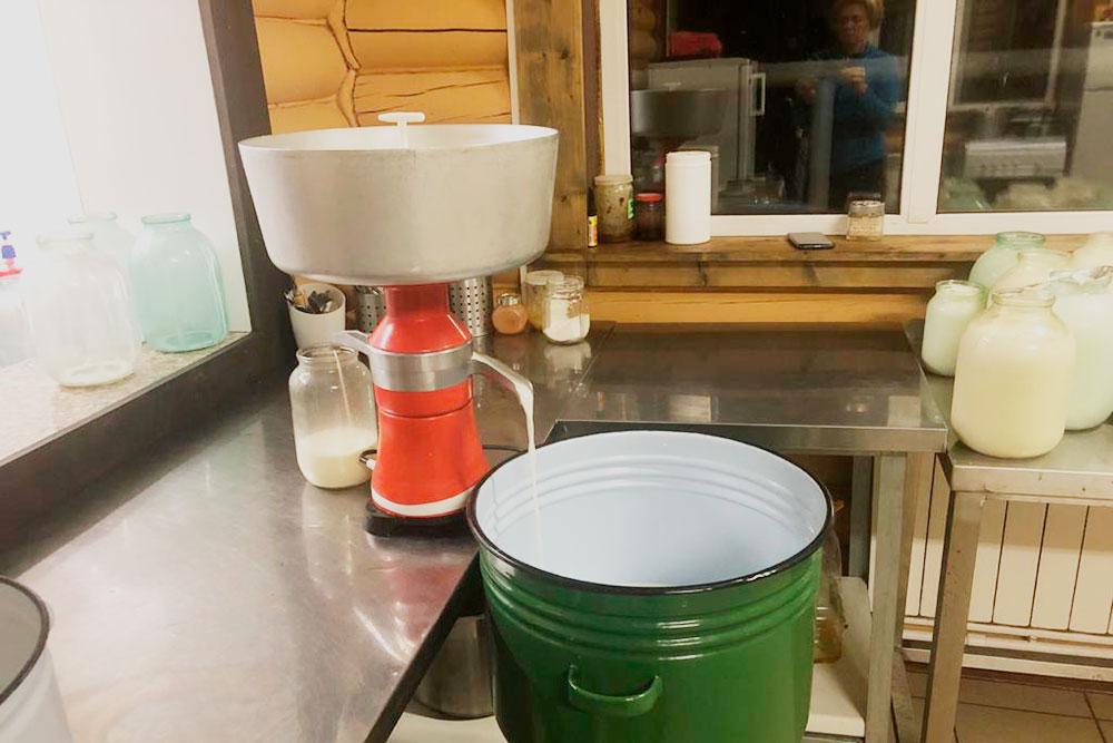 Процесс сепарации — отделения сливок отмолока. Теперь измолока получится обезжиренный творог, а изсливок — домашнее сливочное масло