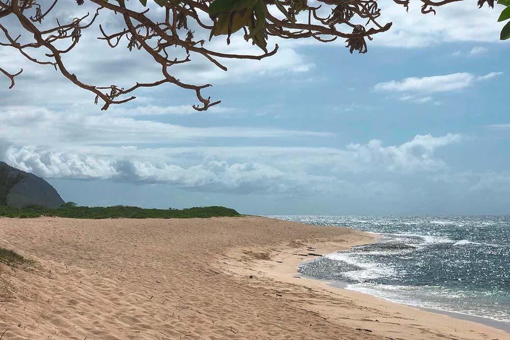 Именно в этом месте напляже Мокулея снимались первые серии «Остаться вживых»