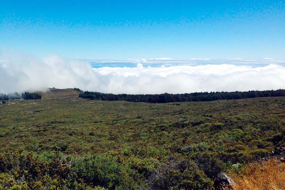 Фотография с дороги Кратер-роуд, ведущей кнациональному парку Халеакала. Высота надземлей — 3000м