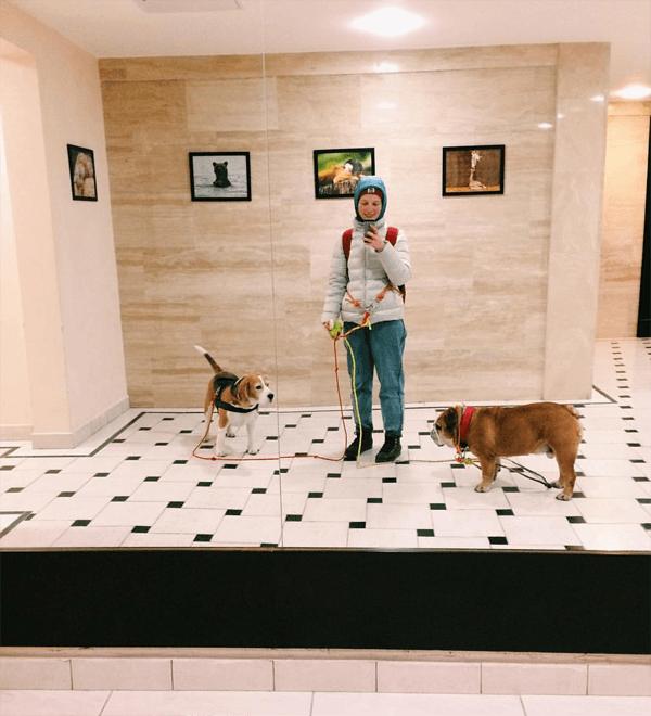 Чтобы работать выгульщиком собак, надо любить гулять в любую погоду