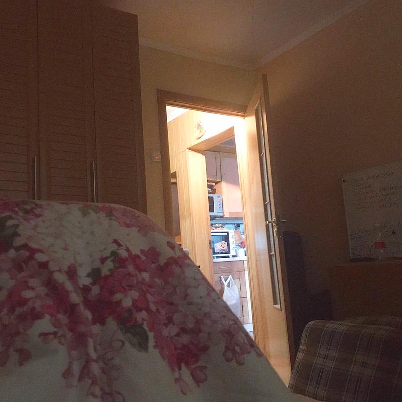 Вид из моей кровати по утрам