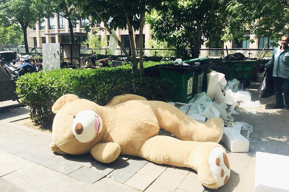 Китайцы любят мягкие игрушки. Этого гигантского медведя выбросили на помойку, но когда-то же он кому-то понравился