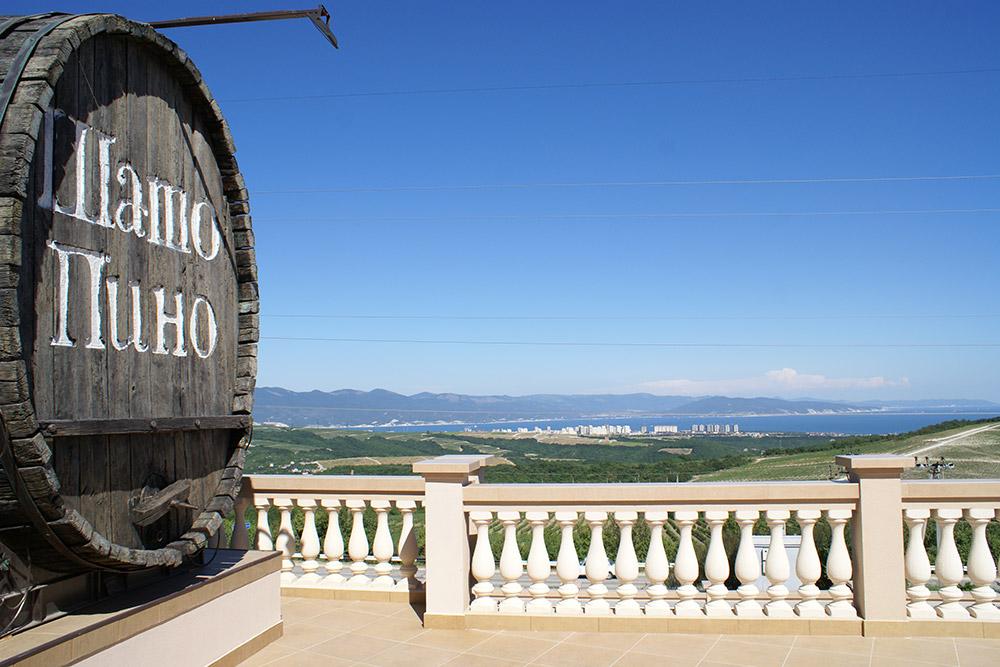 Вид с террасы ресторана «Шато Пино» на Новороссийскую бухту и виноградники
