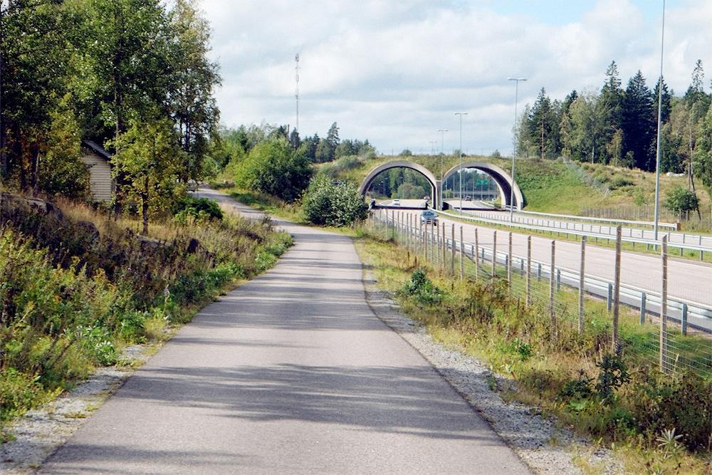 Типичная велопешеходная дорожка в Европе вдоль загородной автомагистрали
