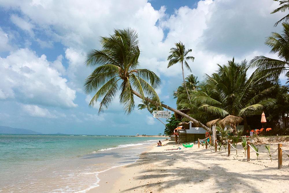 Пляж Мимоза, на котором висит табличка «Here is Koh Samui»