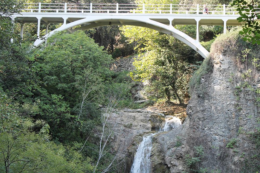 Один из мостов в ботаническом саду Тбилиси. Здесь свежо и прохладно из-за зелени — можно отдохнуть от дневной жары