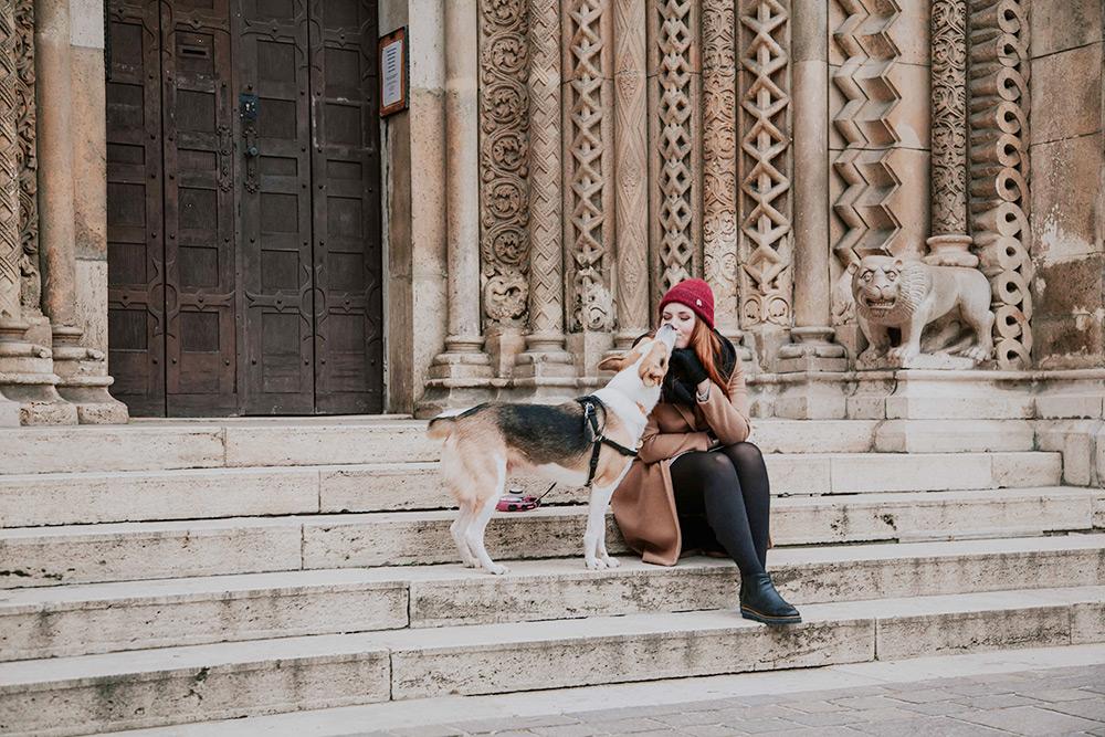 Мы с Рокки любим гулять по территории замка Вайдахуньяд — одной из главных достопримечательностей Будапешта