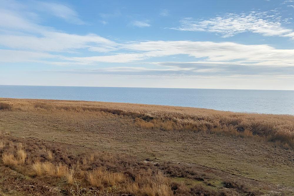 Вид на Таганрогский залив близ деревни Беглицкая Коса