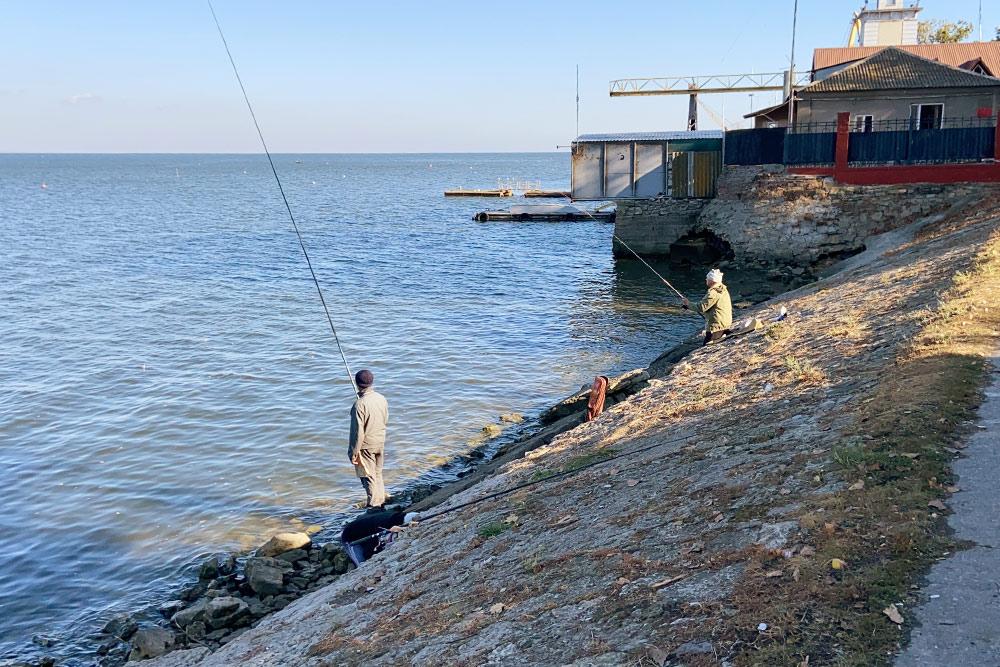 Пожилые люди часто рыбачат днем на набережной. В Таганрогском заливе обитают маленькие рыбки — бычки. Их ловят, чтобы пожарить с томатами или покормить кошку