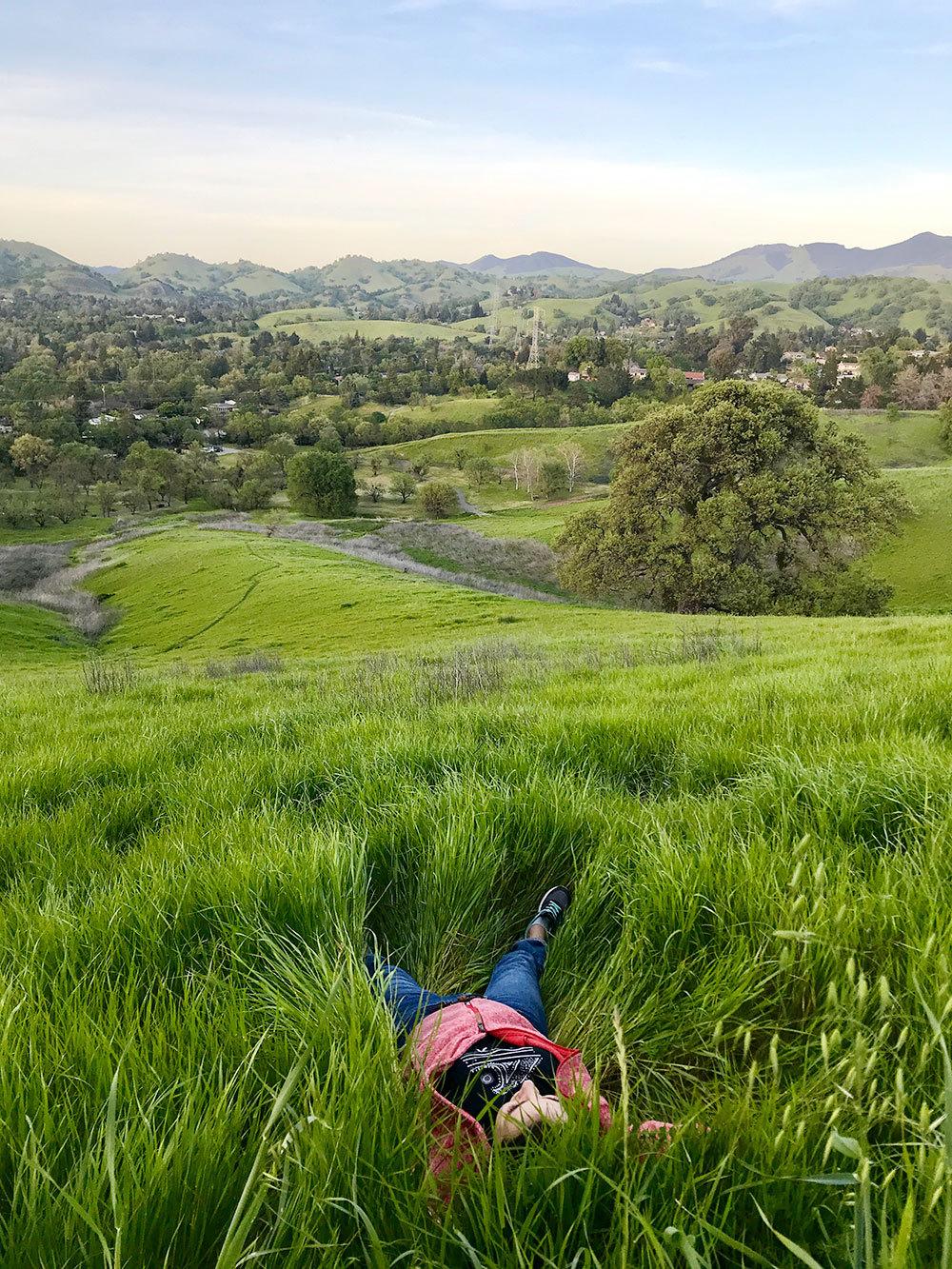 Уолнат-Крик окружен холмами, поэтому здесь теплее, чем в Сан-Франциско. В мае у нас может быть 30 градусов тепла, а в Сан-Франциско из-за ветра с залива не больше 20. Десять минут на машине — и можно гулять по холмам и валяться в траве