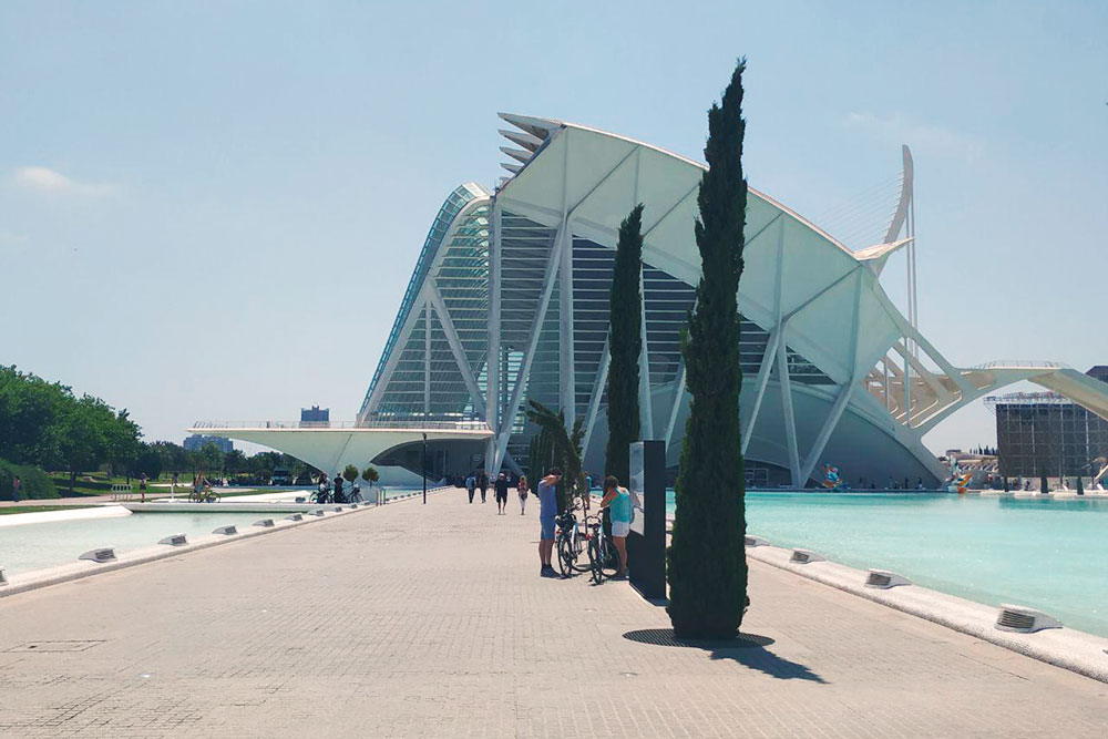 Архитектор Города наук и искусств, Сантьяго Калатрава, родился в Валенсии и сейчас строит футуристические здания по всему миру