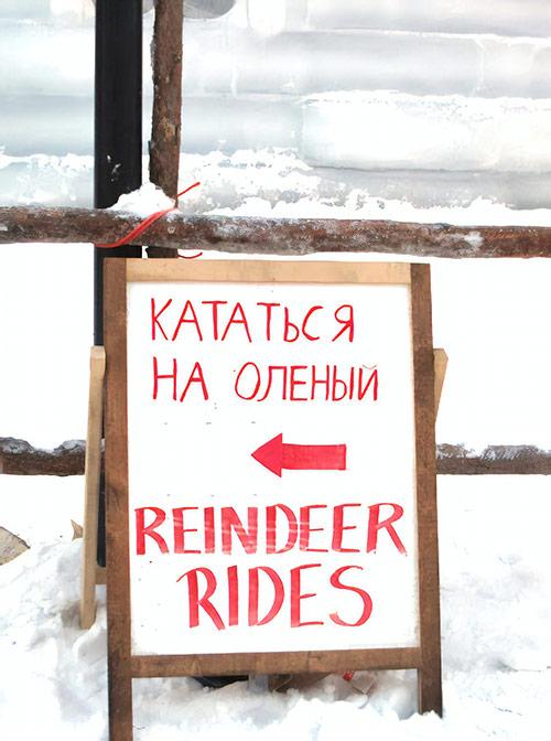 По-русски в Лапландии тоже немножко говорят