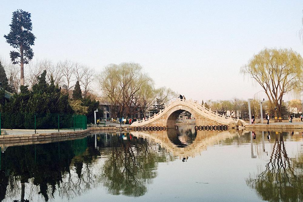 А чтобы зайти в этот парк, надо заплатить 2¥ (19<span class=ruble>Р</span>)
