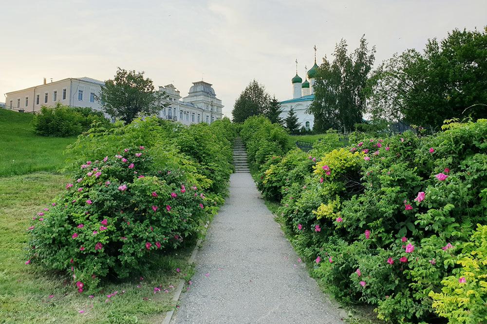 Лестница ведет наулицу Михаила Сеспеля — маленькую иочень живописную