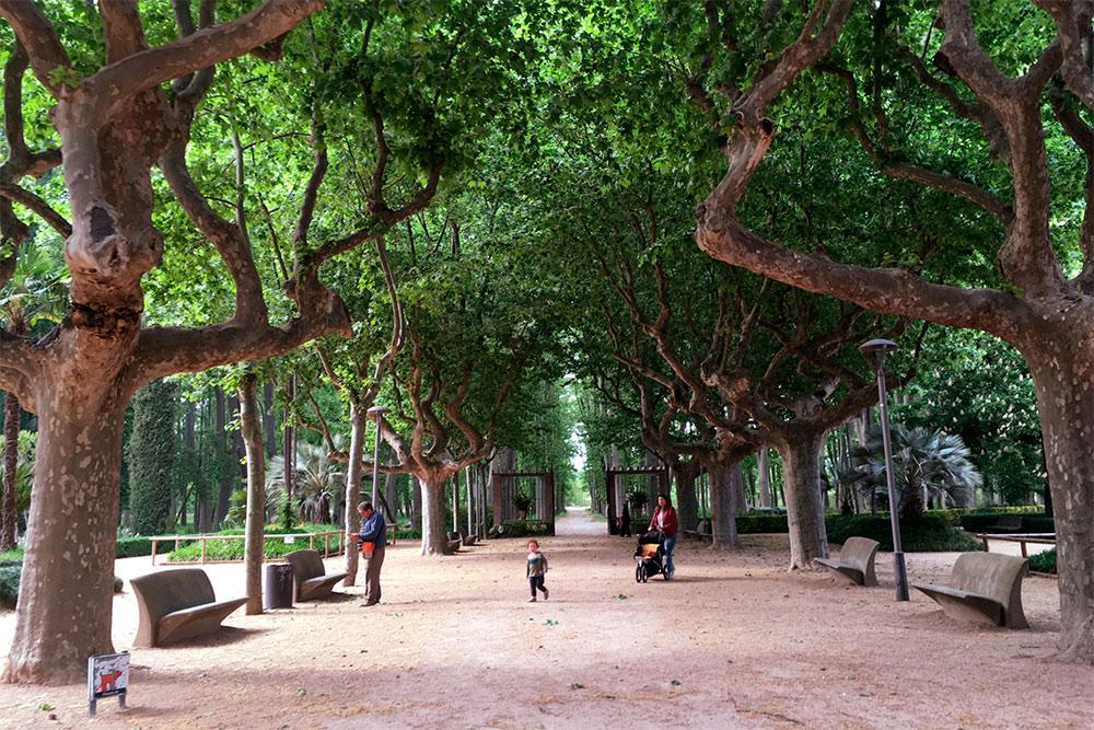 Парк «Девеса» — самый крупный городской парк Каталонии. Его называют легкими Жироны. С 1850года здесь растет больше 2,5тысяч платанов