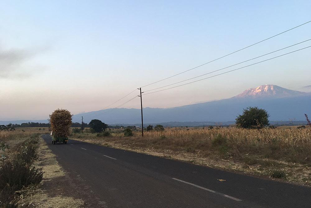 Дорога кнашему отелю иКилиманджаро назакате