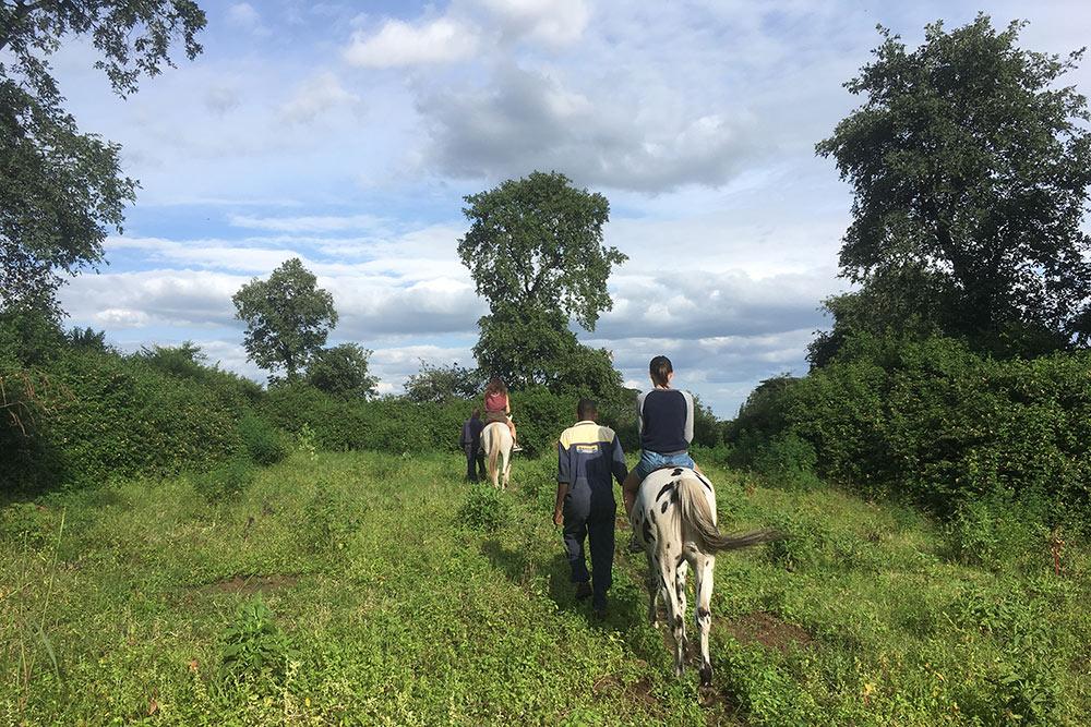 Поездка на лошадях. Для&nbsp;тех, кто&nbsp;не&nbsp;умеет сам, предусмотрен вариант, когда лошадь ведут. Мы&nbsp;катались вокруг лоджа друзей и заплатили всего по&nbsp;30&nbsp;$ (2340&nbsp;<span class=ruble>Р</span>) лично конюхам. Обычно поездка стоит в&nbsp;два&nbsp;раза дороже. Часть денег идет лоджу: на&nbsp;содержание лошадей, зарплаты сотрудникам и&nbsp;прочее