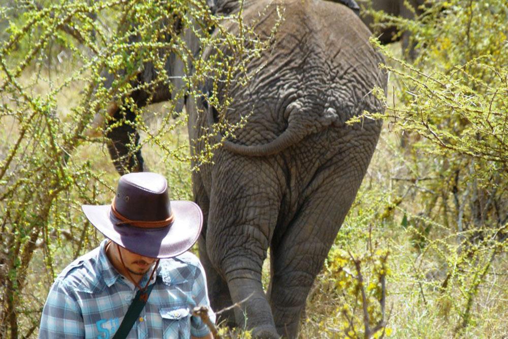 Моялюбимая фотография спопой слоненка. Через минуту после фото слоненок развернулся ипобежал прямо нанас. Помню, какегоуши развевались наветру. Мыначали убегать икричать нашему другу, который нафото, чтобы убрался оттуда поскорее