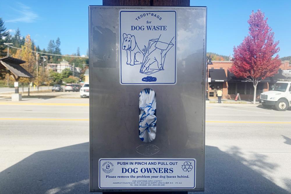 Собаки в Канаде очень популярны, но вы практически никогда не увидите на улицах их «следы». Даже в маленьких городах на несколько тысяч жителей стоят автоматы с бесплатными пакетиками. После того как собака сходила в туалет, хозяин сразу же за ней убирает