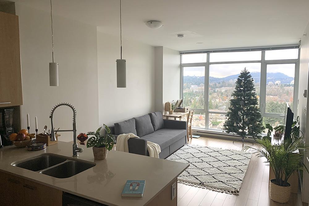 Потолки внашей квартире почти под 3метра, поэтому внейспокойно помещается двухметровая новогодняя елка. Кстати, живые еливквартирах вэтом доме запрещены, потому чтолегко воспламеняются, аихиголки осыпаются вхолле илифте притранспортировке