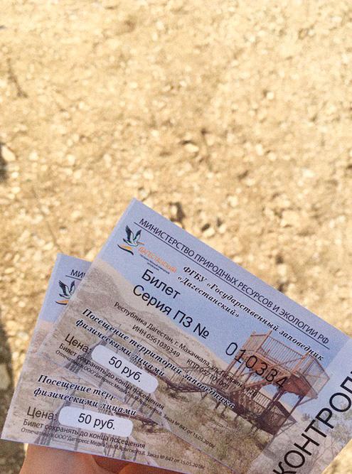 Попасть в пустыню можно только по билету. Бархан считается заповедником и охраняется